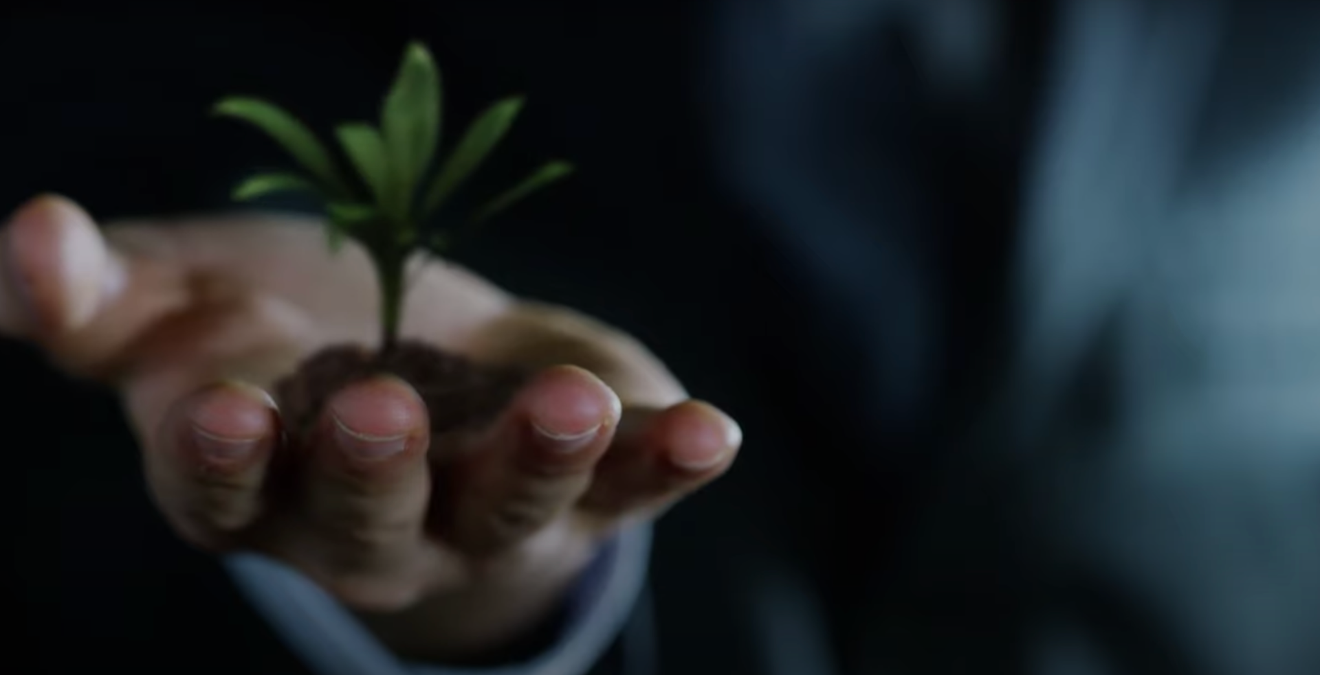 "<img src=""manwithplant.png"" alt=""man with outstretched hand with a plant growing from his palm"">"