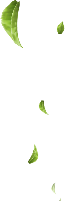 "<img src=""fallingleaves3.png"" alt=""falling green leaves"">"