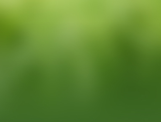 "<img src=""greenbox.png"" alt=""brand green box"">"